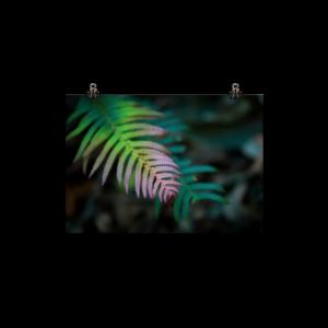 Art Work Leaf