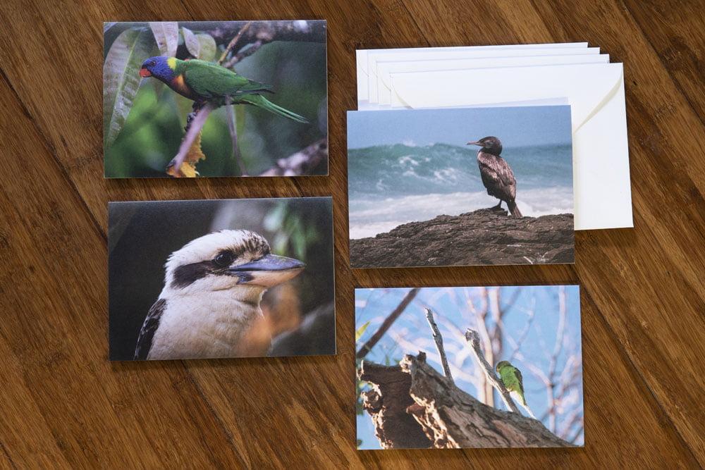 birds cards pack 2