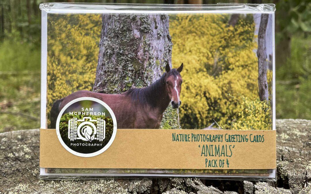 Animal Card Pack